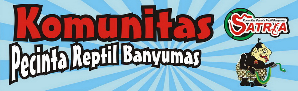 Komunitas Pecinta Reptil Banyumas (SATRIA)