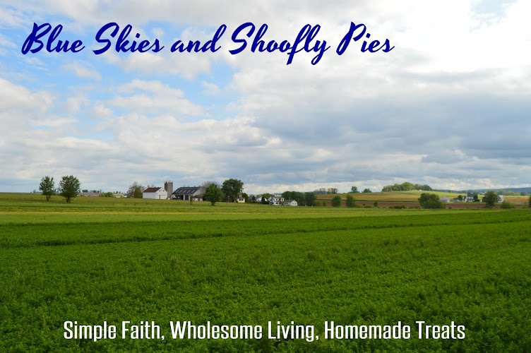 Blue Skies and Shoofly Pies