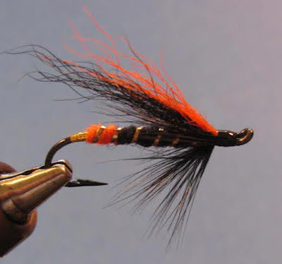 A closeup picture of the Dark Max Canyon steelhead fly in the jaws of a fly tying vice