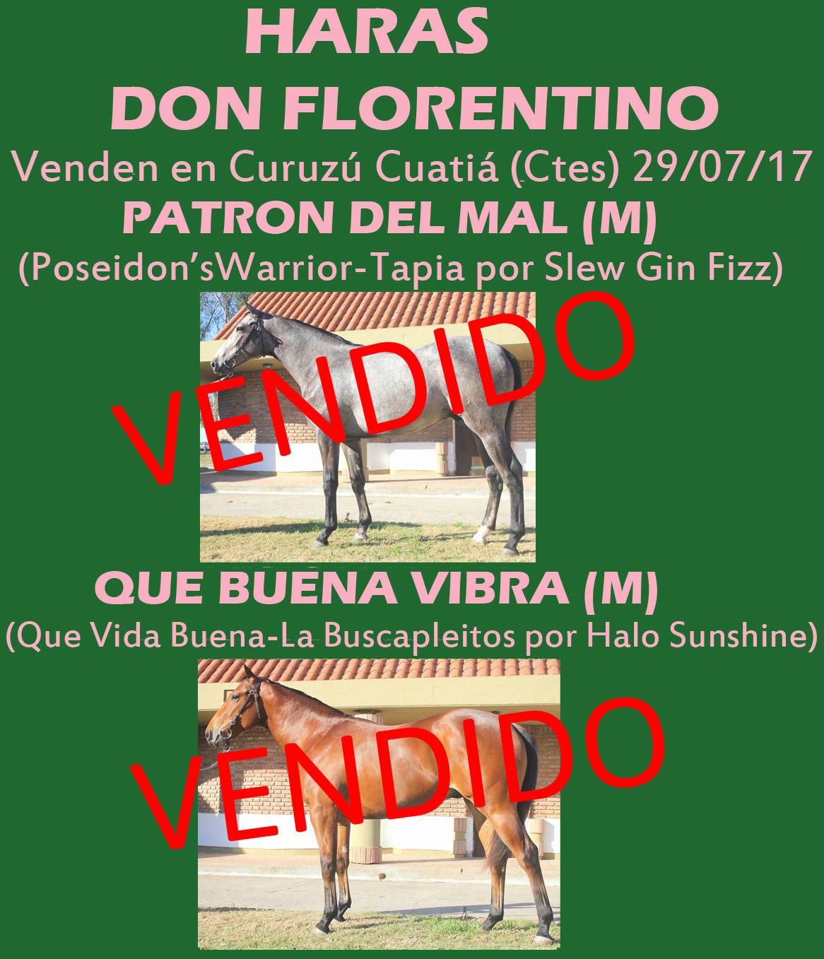 HS DON FLORENTINO 1 VENDIDOS