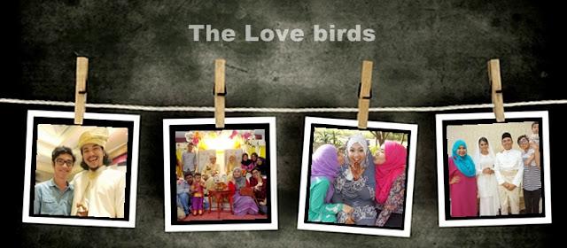 http://enna-banana.blogspot.com/2015/01/2014-love-birds.html