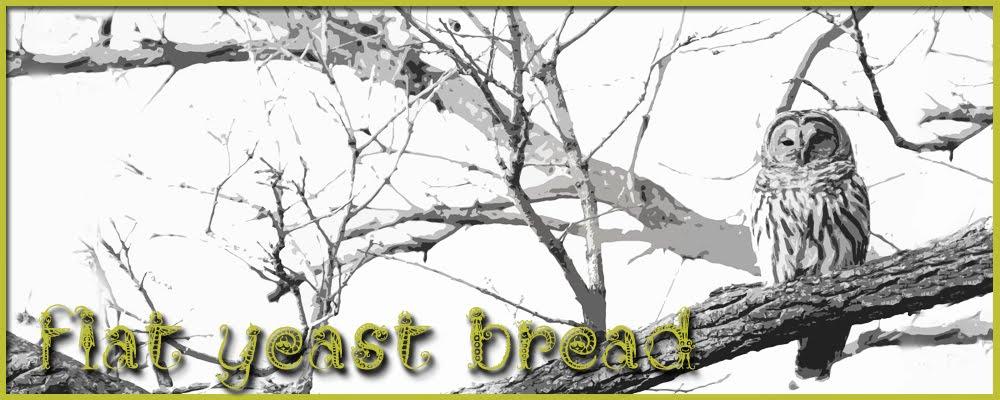 flat yeast bread