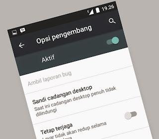 Cara Munculkan Opsi Pengembang Android One dan Mengatifkan Developer Options di AndroidOne