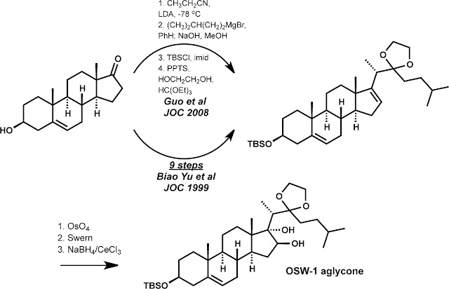 dnp protocol steroids