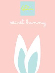 Secret Bunny