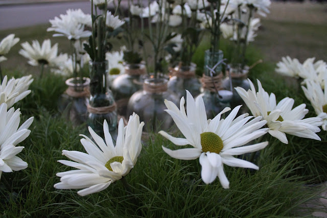 daisies as centerpiece