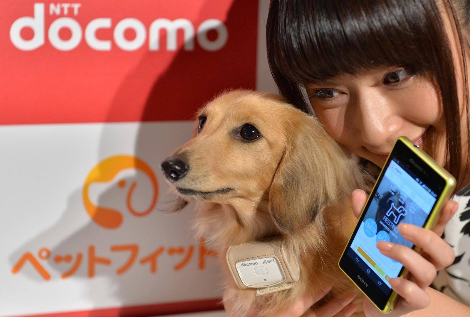 Animal, App, Application, Dog, Health, Japan, Mobile, Model, NTT Docomo, Offbeat, PC, Petfit tag, Phone, Science, Technology, Tokyo,