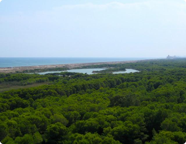 Parque Natural de la Albufera