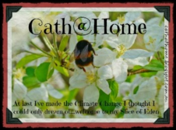 Cath@Home