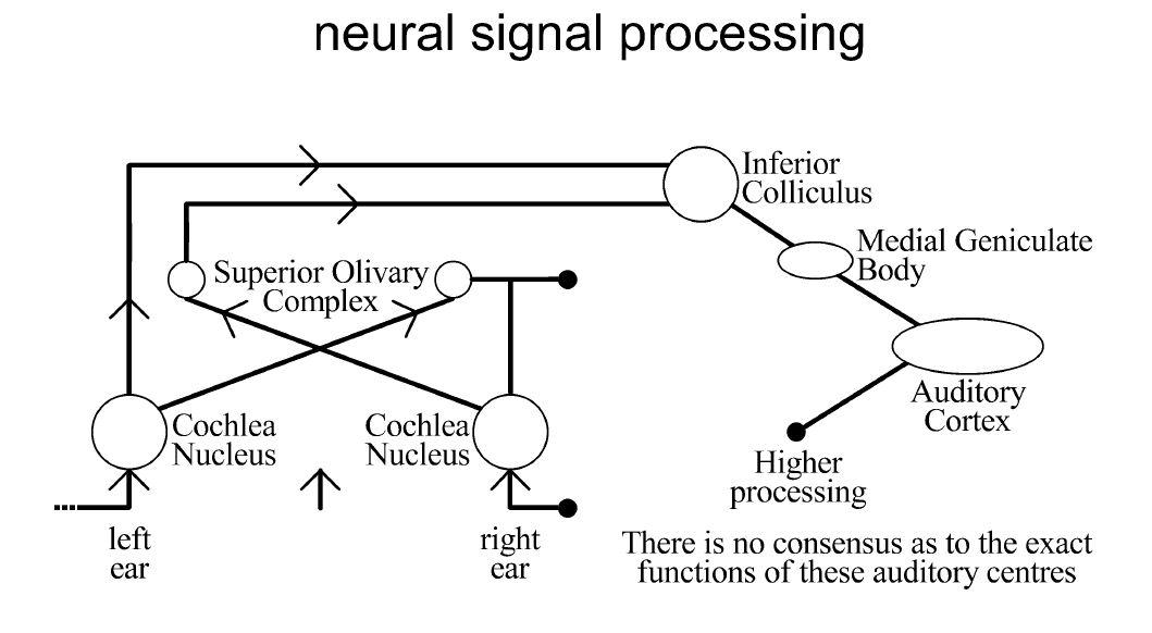 Understanding Music Of Neural >> Audio amp