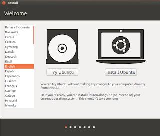 Install Ubuntu 13.04