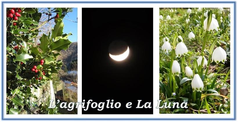 L'agrifoglio e La Luna