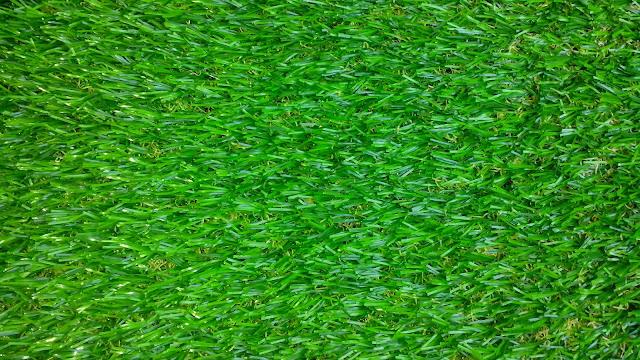 mua cỏ nhân tạo ở đâu?