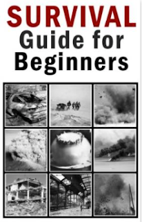 Review: Survival Guide for Beginners l LadyD Books