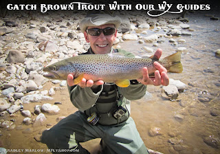 Wind River Fly Fishing just out side Dibois Wyoming can produce some amazing fish