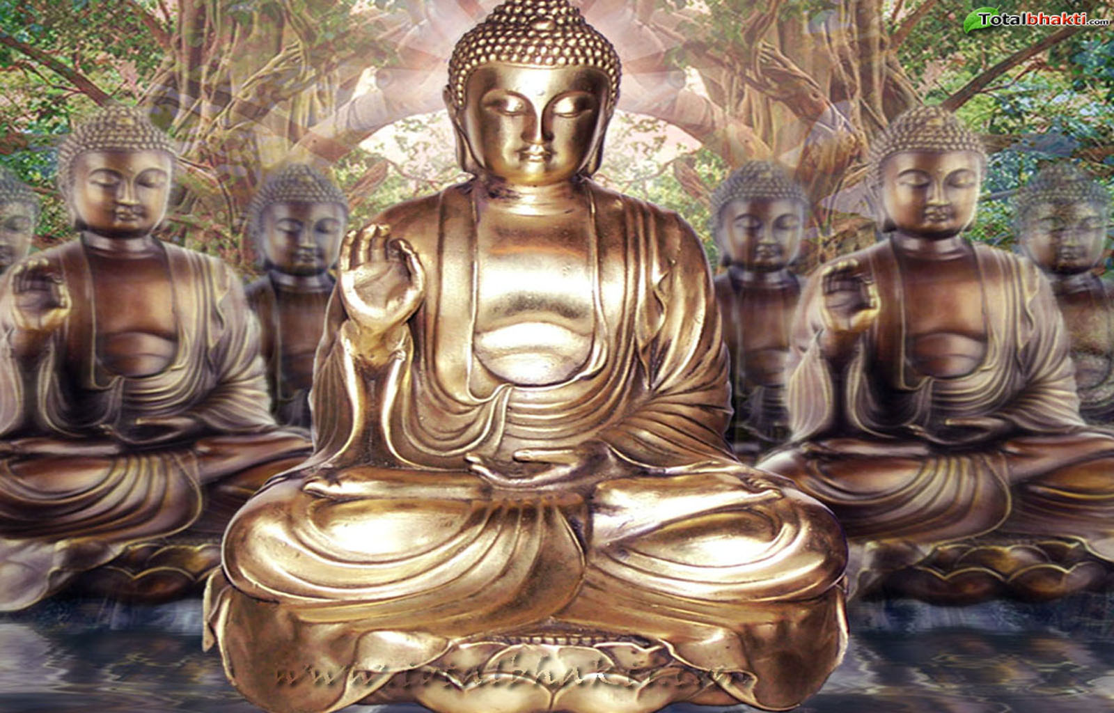 qq wallpapers lord buddha wallpapers