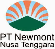 Newmont halts copper output from Indonesian mine - union