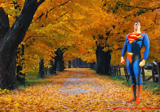 Superman Standing Tall at Autumn Trees Desktop wallpaper