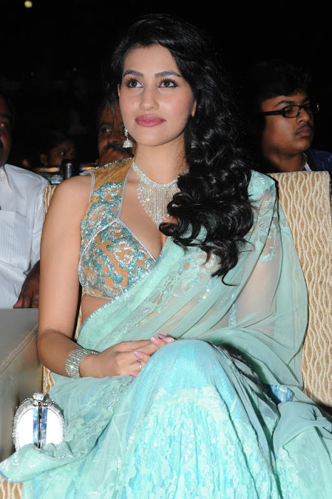 anjali lavania from panjaa audio launch, anjali lavania spicy cute stills