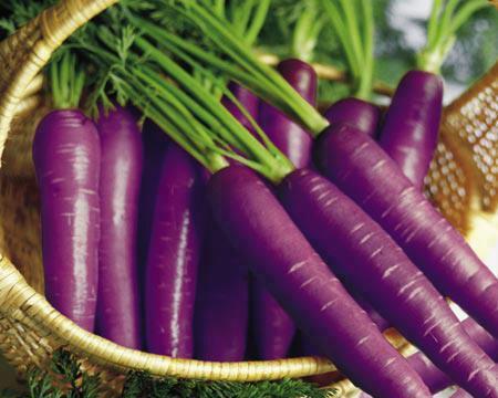 Federapes Sabias Que Cual Es El Color Original De Las Zanahorias Durante los primeros años de su cultivo. federapes