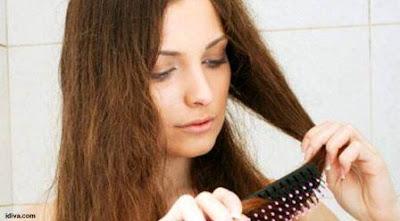 penyebab rambut rusak, kering dan bercabang