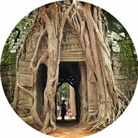 Ta-Som-puerta-higuera-sagrada