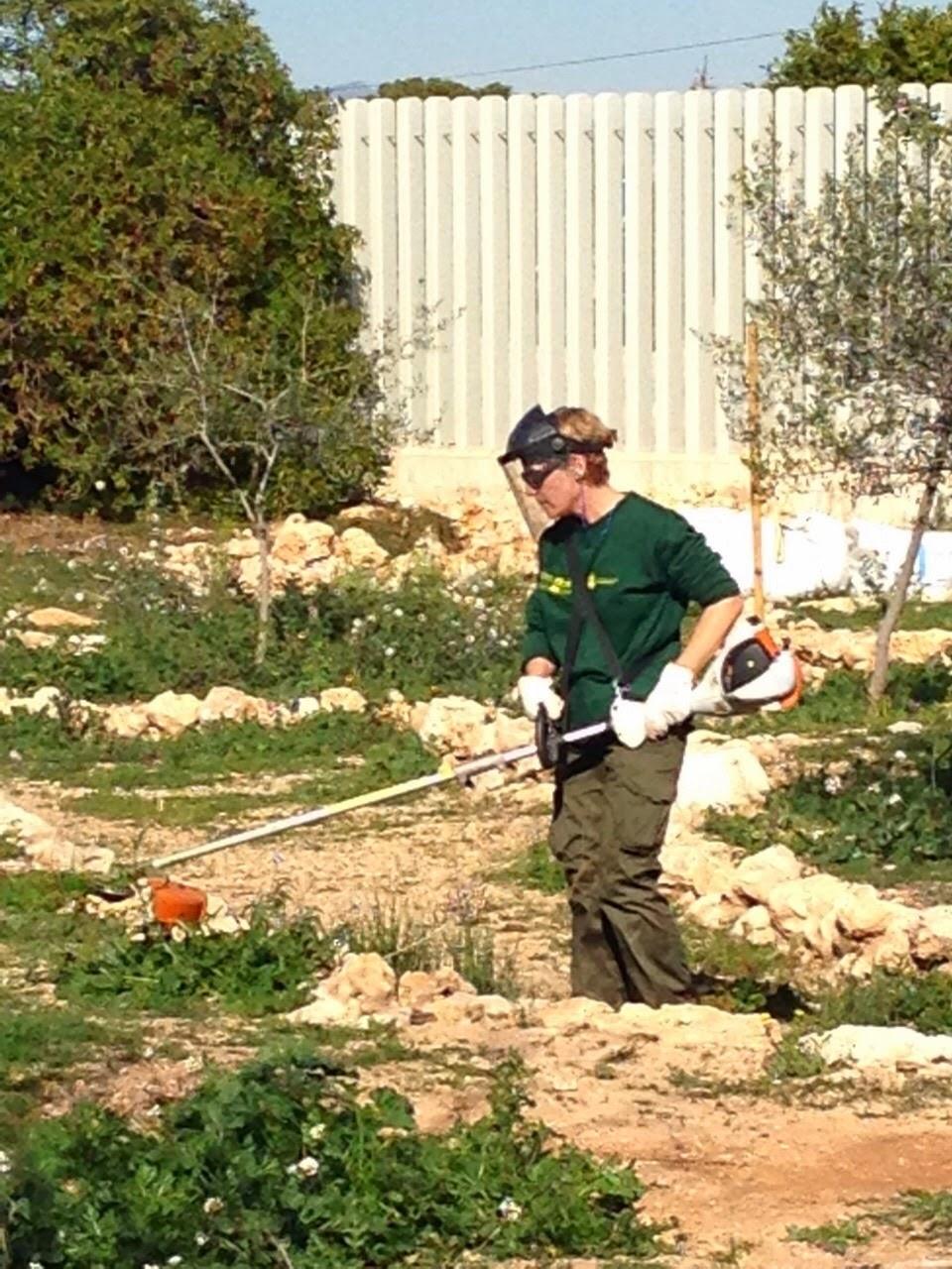 Taller de empleo direct iv instalaci n y mantenimiento de for Mantenimiento de jardines