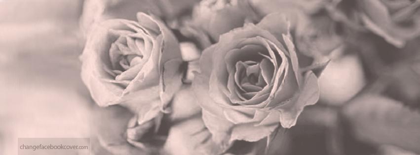 Vintage Flower Facebook Cover Photo   www.pixshark.com ...