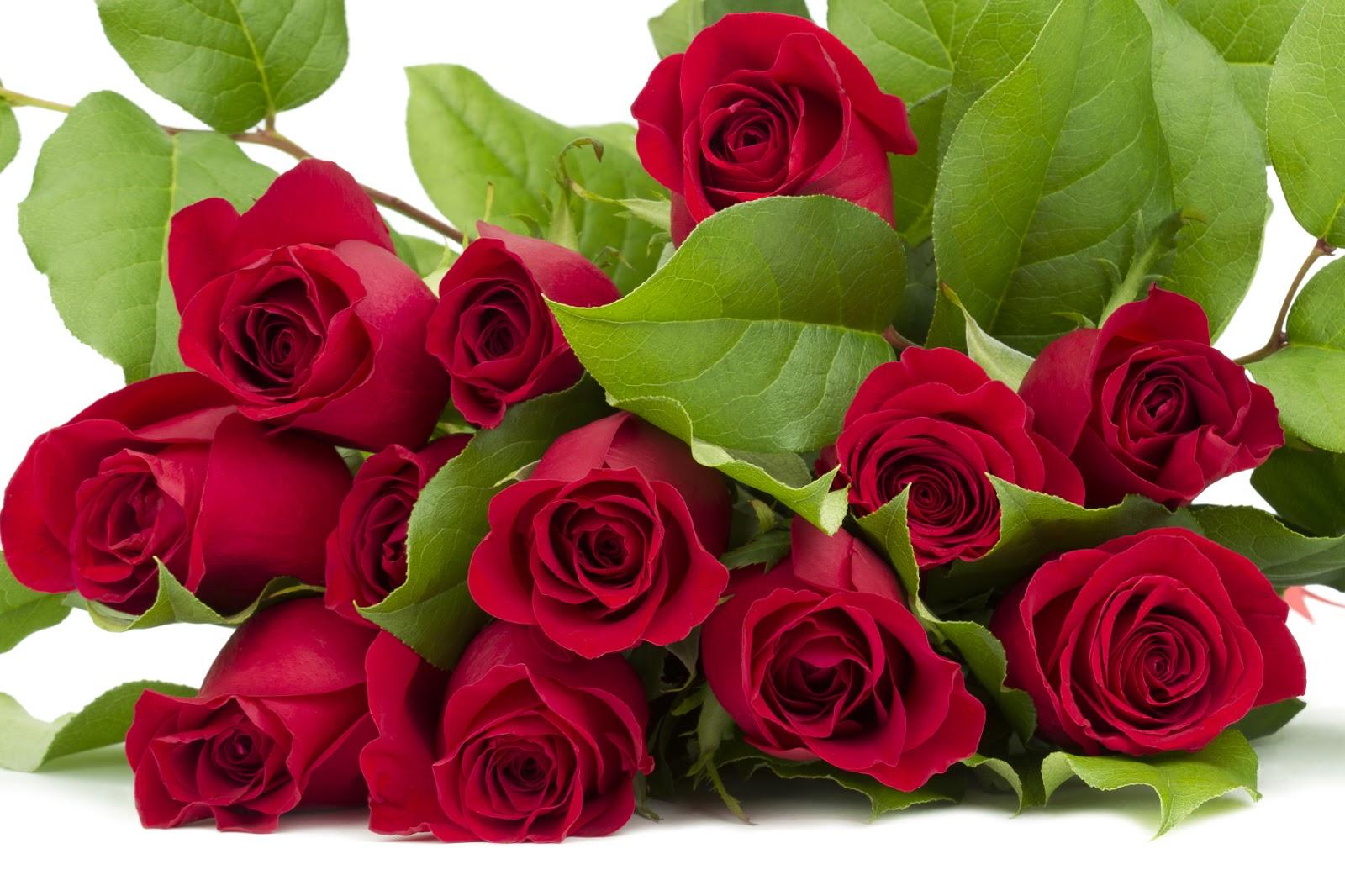 Día de San Valentín, 14 de febrero, día del Amor y la Amistad