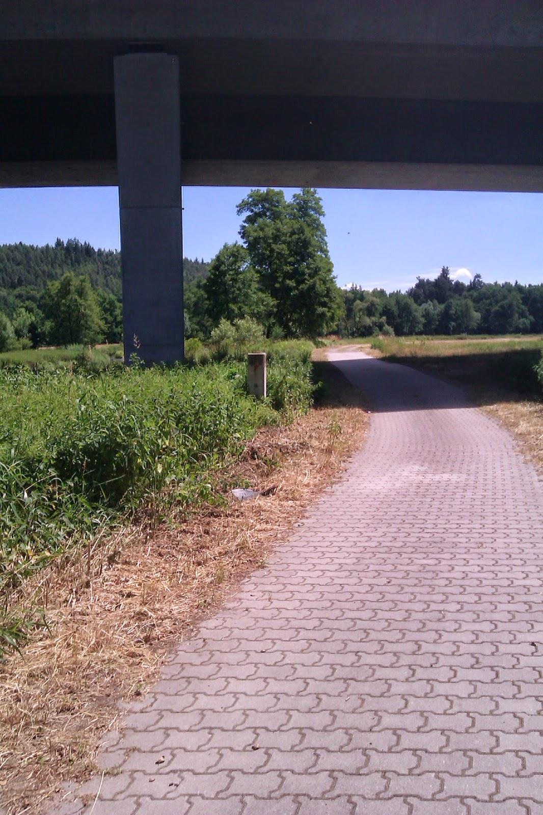 Naabtalradweg asphalt straßenpflaster