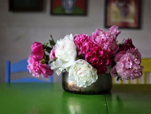 Getting Stitched On The Farm Peonies Yes The Exquisite Book Of