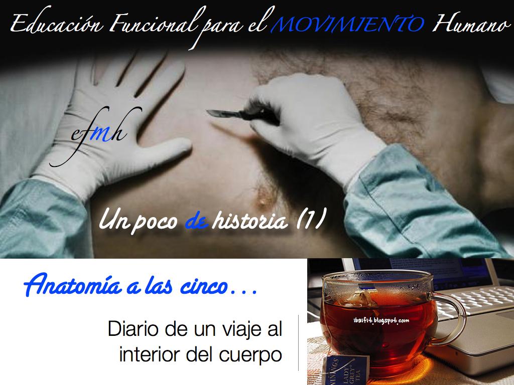 HISTORIA DE LA ANATOMÍA (I): El descubrimiento del cuerpo en la ...