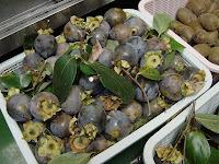 上田市では珍しい黒柿