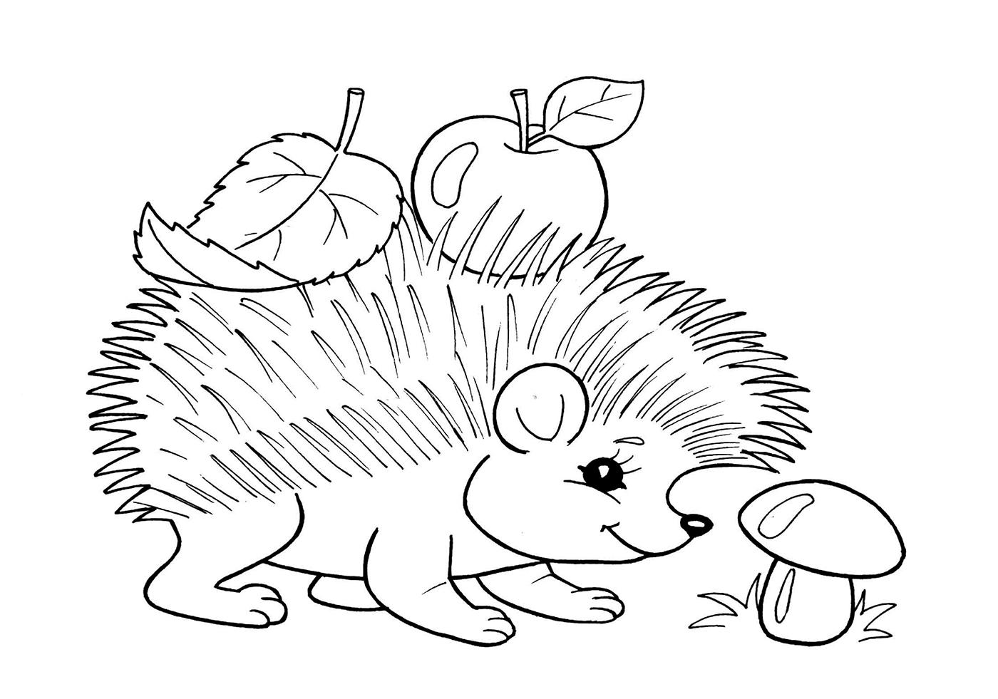 Изображения животных раскраски