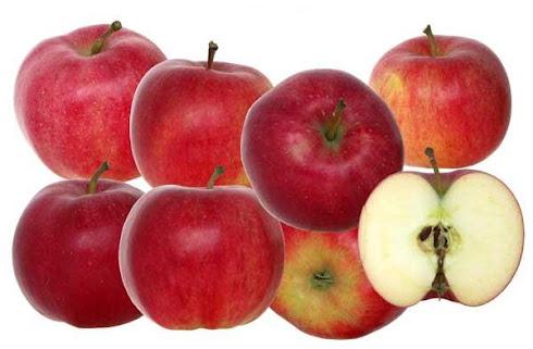 Ticari değeri yüksek elma çeşitleri