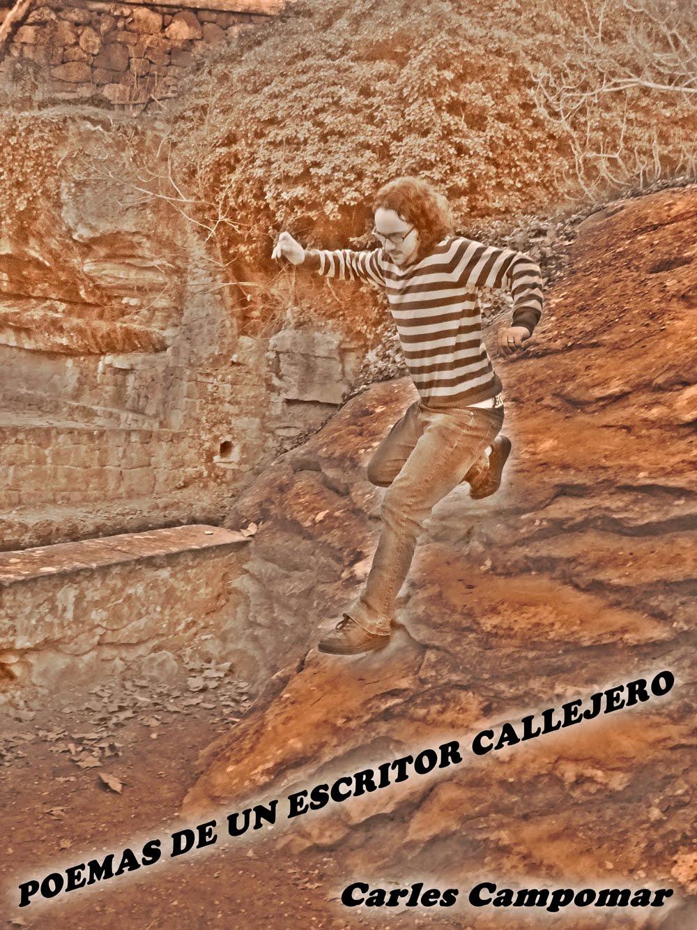 Poemas de un escritor callejero (2012)