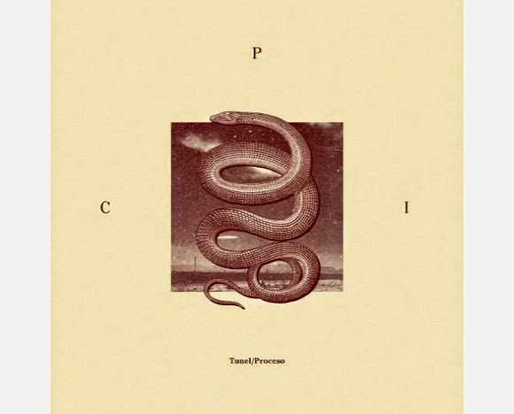 C.P.I. - Proceso