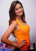 Actress Shilpi Sharma Hot Photo shoot-thumbnail-2