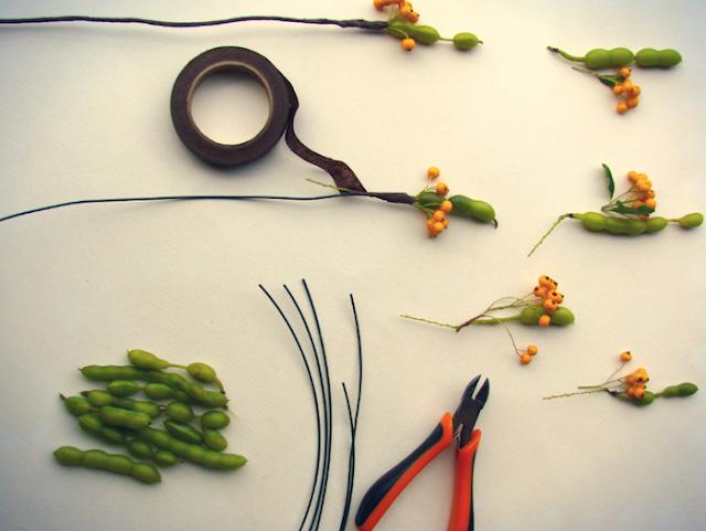 diy: decorazioni con semi, bacche e baccelli, autunnali