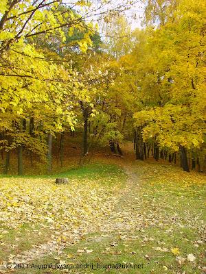 Личаківський парк у львові осінь 2011
