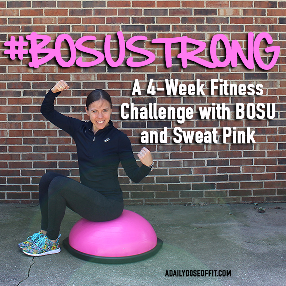 Fit Approach , BOSU Trainer, Fitness, FitFluential FitFamily