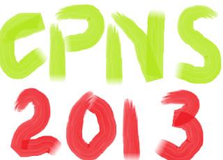 CPNS 2013