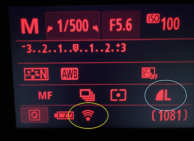 canon wifi display