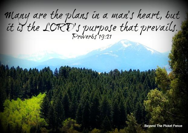 bible verse, making plans, God's Word, Sunday verses, http://bec4-beyondthepicketfence.blogspot.com/2015/06/sunday-verses_14.html