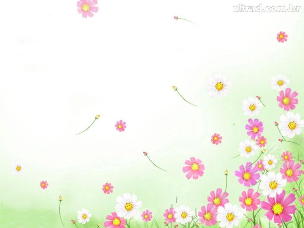 fundo flores