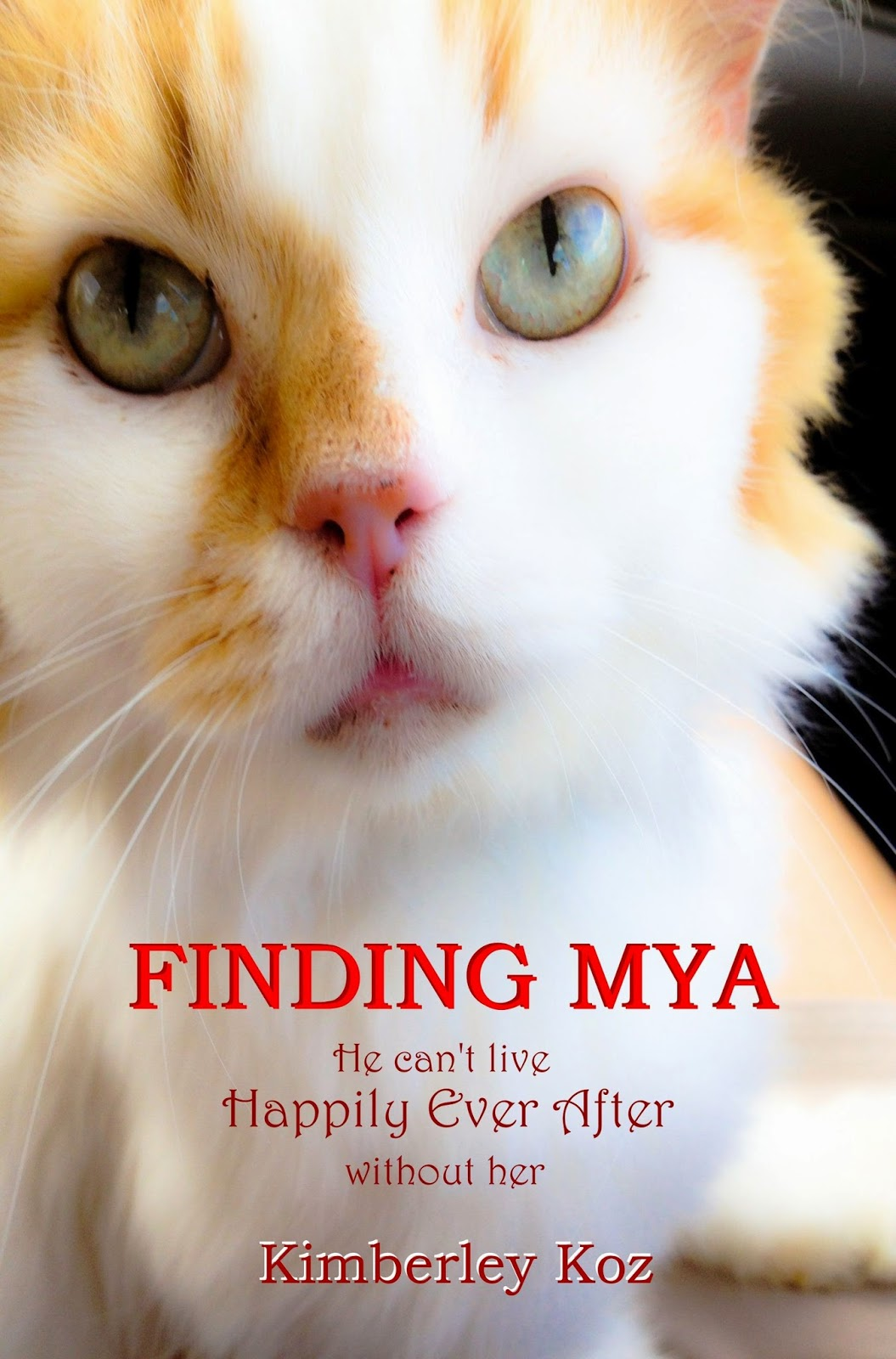 http://www.amazon.com/Finding-Mya-Happily-After-without/dp/069228575X/ref=sr_1_1?ie=UTF8&qid=1412968900&sr=8-1&keywords=finding+mya