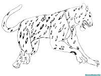 Mewarnai Gambar Jaguar Melompat Menerkam Mangsa