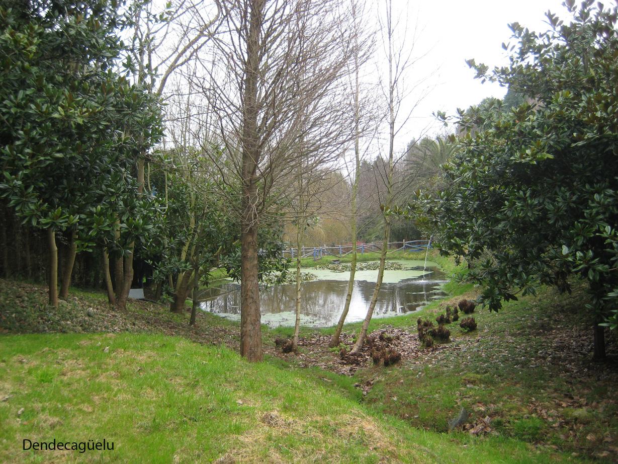 Dendecaguelu los jardines de la fonte baixa en invierno for Jardines de la fonte baixa