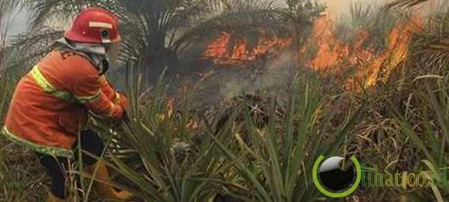 Lebih dari 100 Titik Api