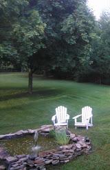 Our Water Garden